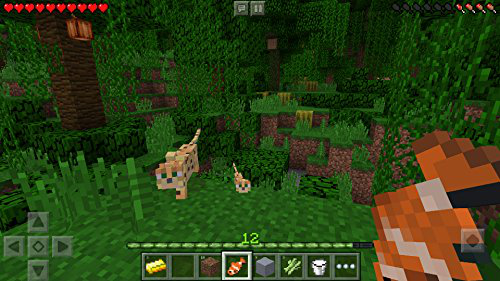 Minecraft Mojang Mobile Application