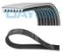 DAYCO 7PK1165S - Cinghia trapezoidale scanalata e set cinghia trapezoidale, cinghia trapez...