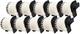 10 x DK22205 62mm x 30.48m Etichette continuo compatibile per Brother P-Touch QL-500 QL-50...