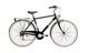 Adriatica Bici Bicicletta PANAREA Uomo 28'' Shimano 6V Nera