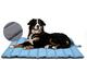 XIAPIA - Cani Cuscino Impermeabile di Grandi Dimensioni, Cuscino con Spazzola, Lavabile in...