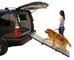 Pet Ramp PG9300DR - Ingranaggo ripiegabile