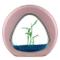 Nobleza - Acquario Nano Fish Tank con luci LED incorporate e Pompa dell'Acqua, acquari Tro...