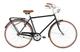 """Alpina Bike Sporting, Bicicletta 1v Uomo, Nero, 28"""" 540 mm"""