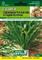 Semi di Cicoria Catalogna Puntarelle a Foglia Stretta 8 grammi