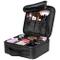 Luxspire Makeup Cosmetic Storage Case, Professional Make up Train Case Cosmetic Box Portab...