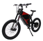 Exclusive Customized FC-1 Powerful Electric Bicycle eBike Mountain 48V 1500W Motor with 48...