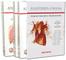 Anatomia umana. Atlante. Con aggiornamento online: cofanetto con volume 1-2-3