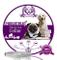 Collare antipulci e zecche per Cani, Collare Regolabile Impermeabile, Soluzione Naturale C...