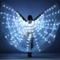 Danza del Ventre LED 360 ° Ali Incandescenti da Donna Danza Prestazione Ali Luminose più C...