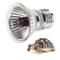 Haofy E27 Lampadina per Riscaldamento Rettile, UVA UVB Lampada Solare per Spettro Completo...