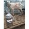 QIYINGYING Latticello Latte Pompa mungitrice Pecora con Dispositivo di mungitura Bestiame...