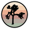 Big Lens store U2 - Adesivi The Joshua Tree (3 Pezzi/Confezione)