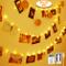 Anpro 50 LED Luci Foto con Mollette - Telocomando Striscia Luci Portafoto con 8 Modalità d...