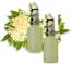 Finest Call Premium Elderflower Syrup for Cocktails / Sciroppo ai Fiori di Sambuco - 2 x 1...