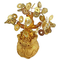 GMMH Feng Shui Albero dei Soldi Fortunato Bonsai Oro 17 Centimetri Albero di Centesimo a M...