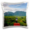 Danita Delimont - Farms - Limestone hill, farming land in Vinales valley, Cuba - CA11 KSU0...