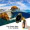 Sjpzwcrl per GoPro Dome Port, per Gopro Hero Nero Accessori Dome GoPro Lente Subacquea a C...