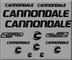 Ecoshirt HC-LSPK-DLSV Adesivi Cannondale Rush R307 Stickers Aufkleber Decals Adesivi, Nero
