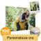 Coverpersonalizzate.it Quadro con Foto Personalizzata, Stampa su Forex PVC Ultraleggero 21...