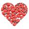 DEKOWEAR Coccinella con il punto di colla 100 Pezzi di legno per Decorare, Rosso o di Colo...