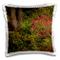 Danita Delimont - Flowers - Rhododendrons, Crystal Springs Rhododendron Garden, Portland,...