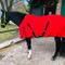Pferdelinis Coperta per Cavallo con Fascia Incrociata per Cavalli, Pony – Coperta per Cava...