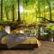 murimage Carta Parati Foresta 366 x 254 cm Include Colla Legno Alberi Luce Solare fotomura...