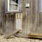 Kerbl Set Porta Automatica per Pollaio 300x400 mm 70546