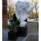 Nature Copertura Antigelo per Piante in Pile 30 g/m² Bianco 4x6 m