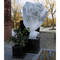 Nature Copertura Antigelo per Piante in Pile 30 g/m² Bianco 2x10 m