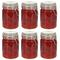 vidaXL Barattoli in Vetro con Chiusura a Gancio 6 pz 750 ml