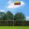 vidaXL Bandiera della Lituania 90x150 cm