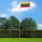 vidaXL Bandiera della Lituania con Pennone in Alluminio 6,2 m