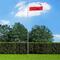 vidaXL Bandiera della Polonia con Pennone in Alluminio 6,2 m