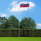 vidaXL Bandiera della Slovacchia con Pennone in Alluminio 6,2 m