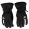 Guanti da sci SALOMON - Insulated Gloves Gants L40424200 Black